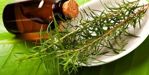 Tea Tree Oil Acne Treatment